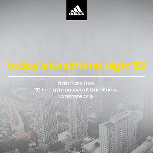Adidas_Haze