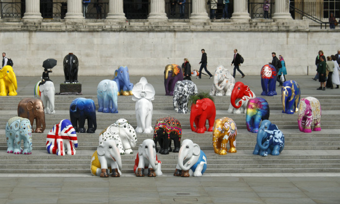 ElephantParade3
