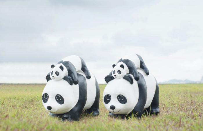 02_Mom and cub panda