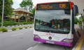 Bus stop_123rf