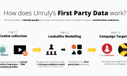 How does Unruly work?