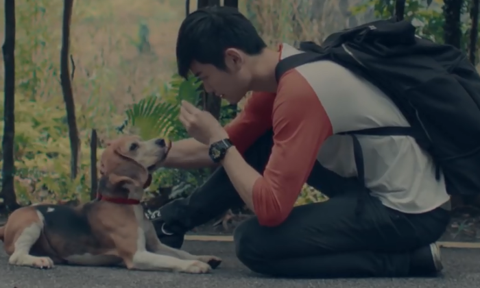 AA Pawsperous CNY video scene-AirAsia