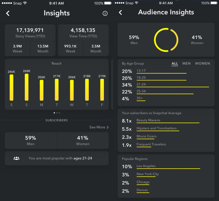 Snapchat Analytics Screenshot
