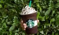 Midnight_Mint_Mocha_Frappuccino